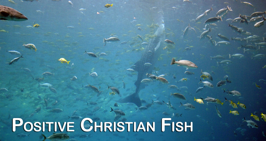 Take a free swimming lesson in God's ocean of love.